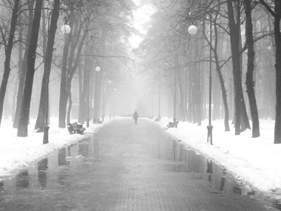 Туман сгущался