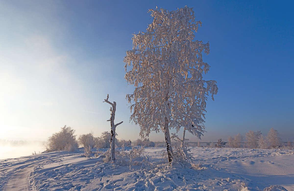 Зимняя зарисовка