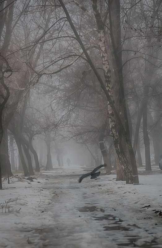 Утро 8 марта)))))