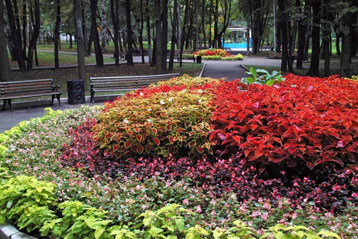 Люблинский парк (Усадьба Люблино)