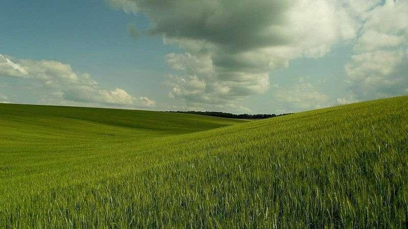 Windows XP desktop :-)