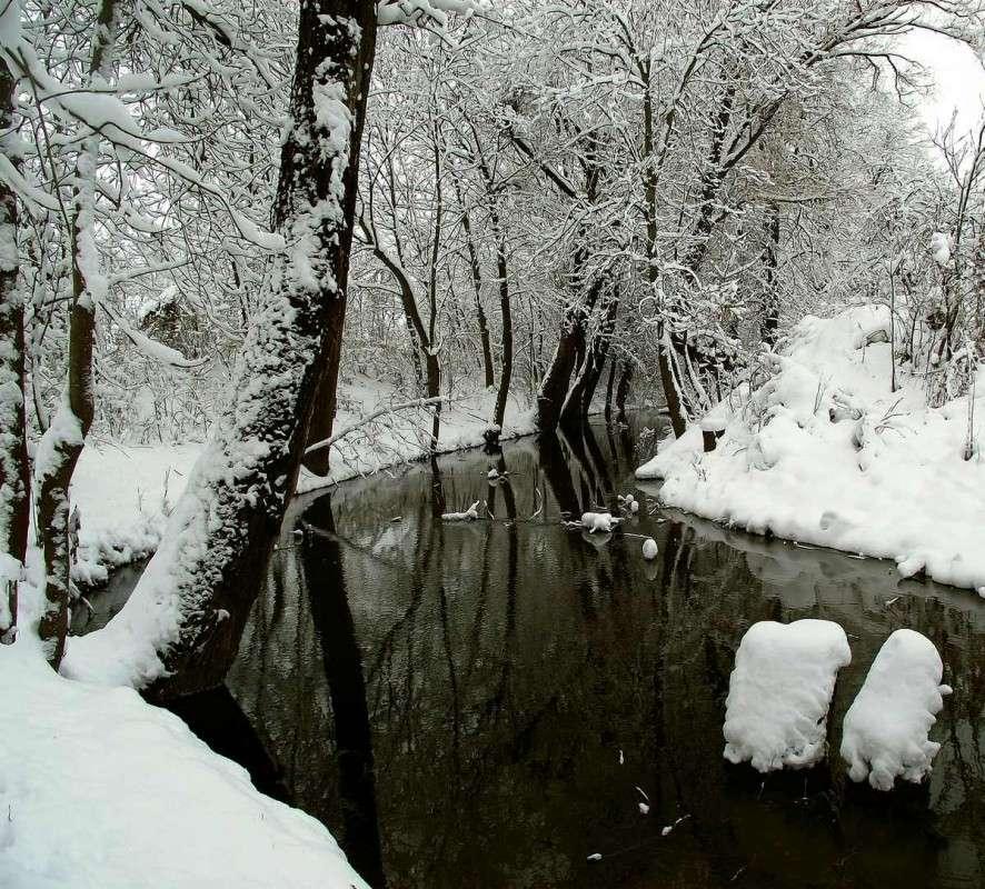 Зимняя тема