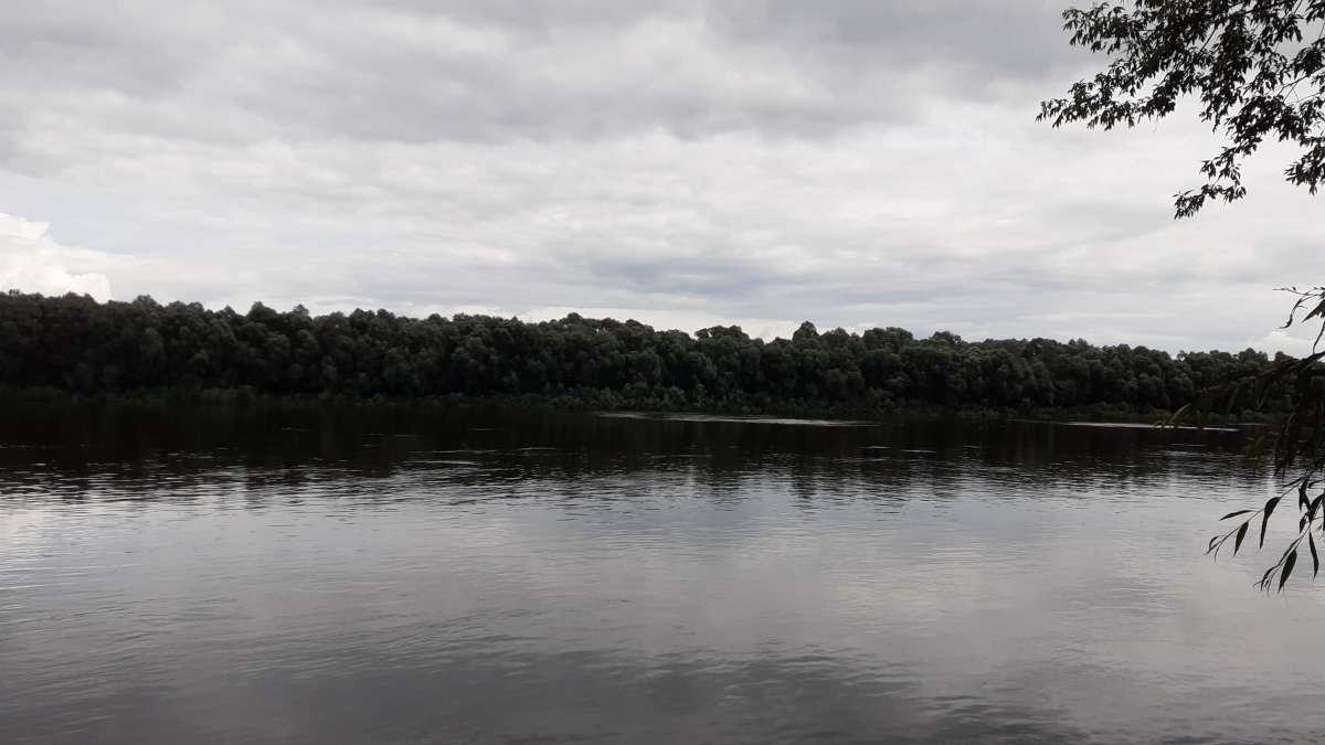 своя Река...