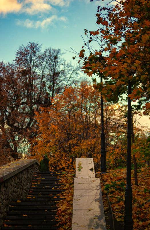 осень. лестница. фонарь