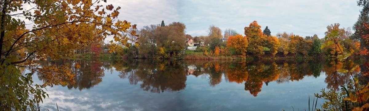Осень в Ясной поляне.