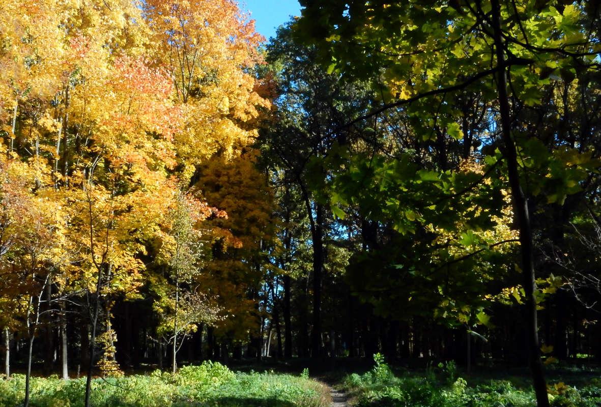 Граница между осенью и летом.