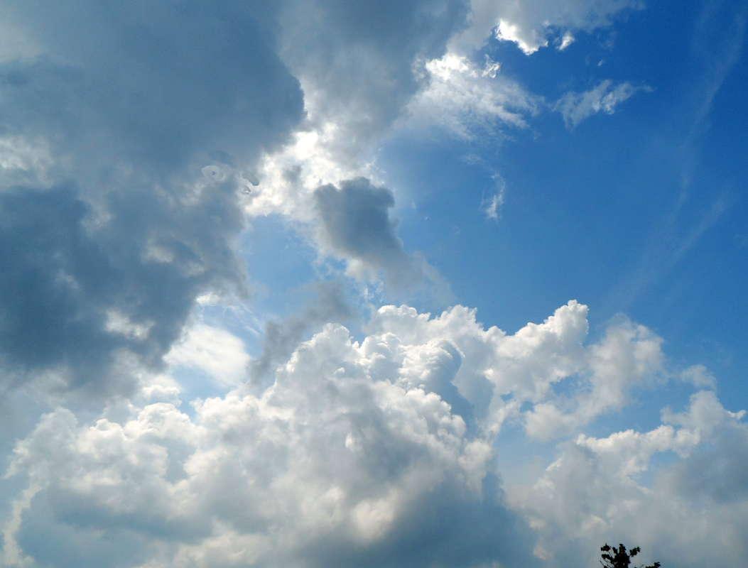 Смотрящий с небес
