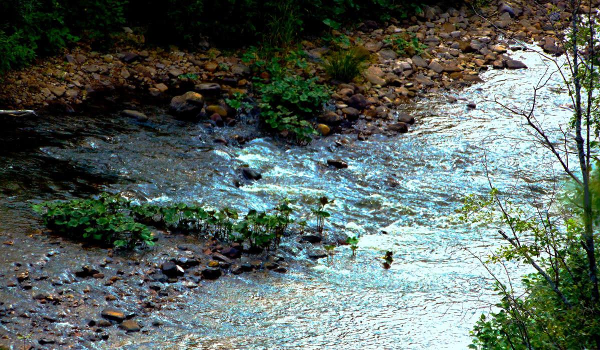 Ручей-река