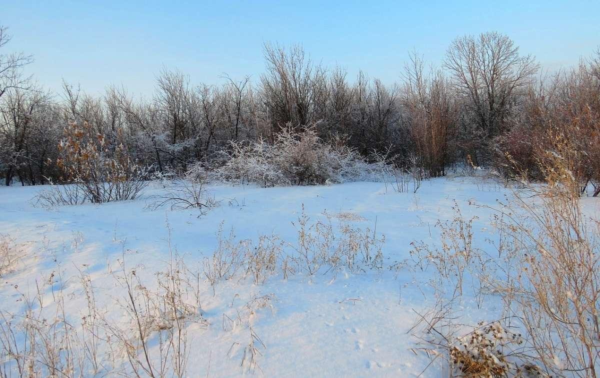Зимний вечер в степи
