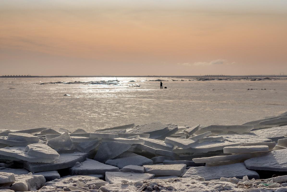 На Финском заливе (30)