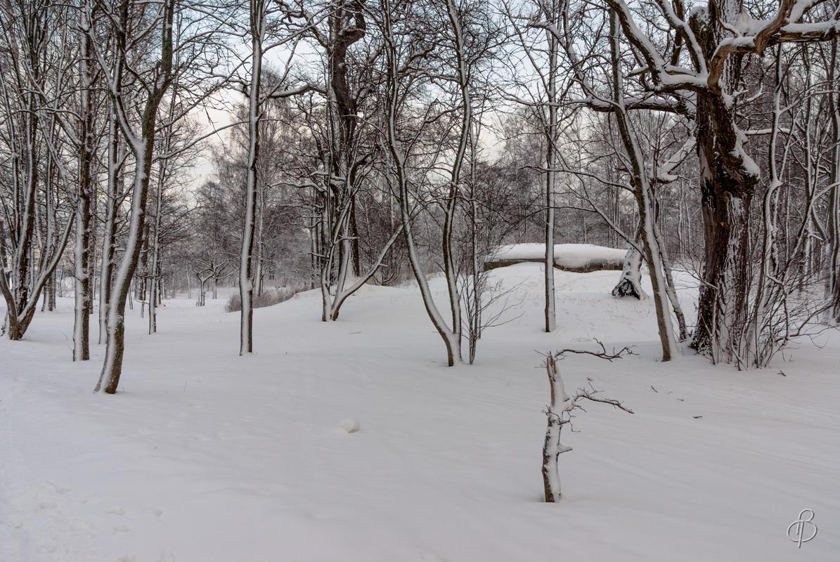 Зимние сумерки 4