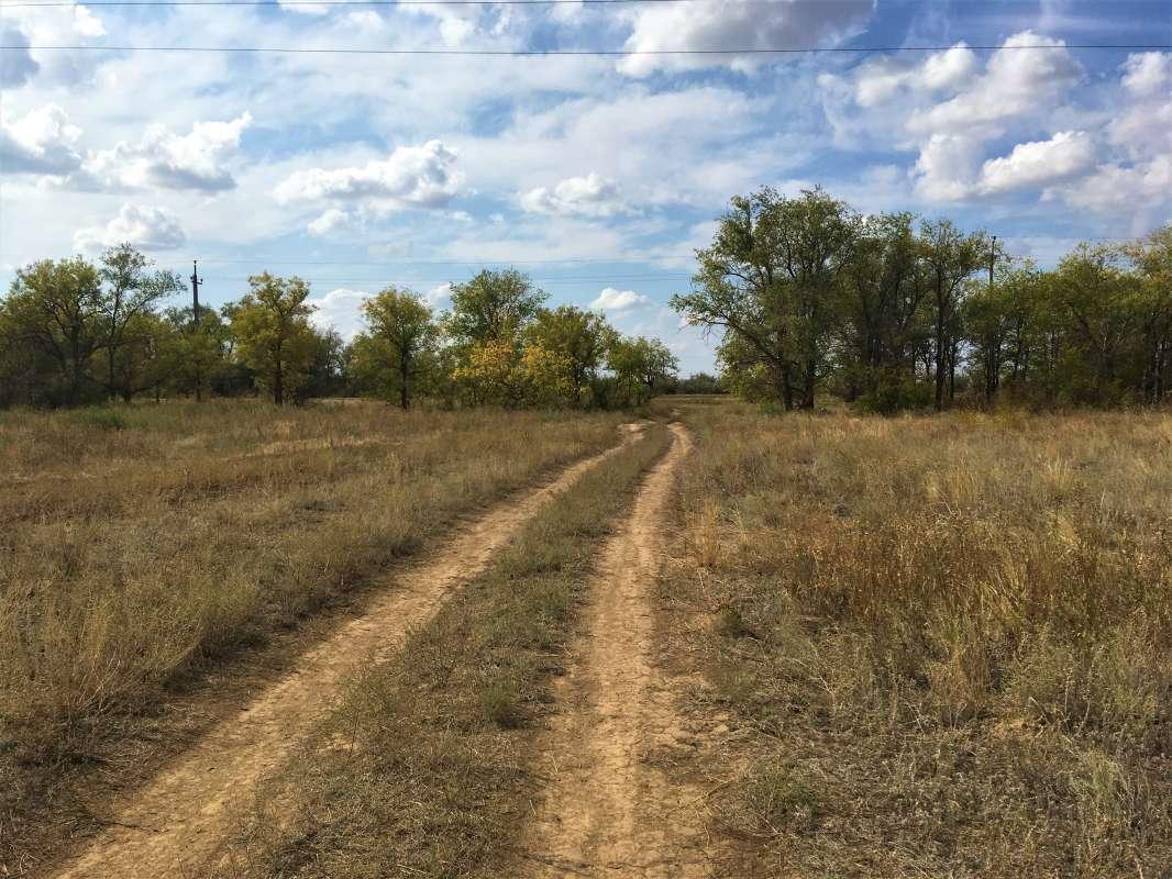прогулки по окрестностям