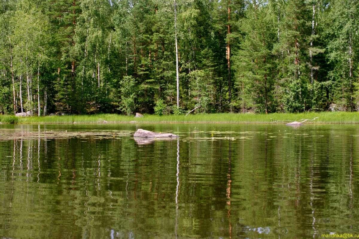 "Цикл фото ""Вуокса"". Камни на берегу и на  воде."
