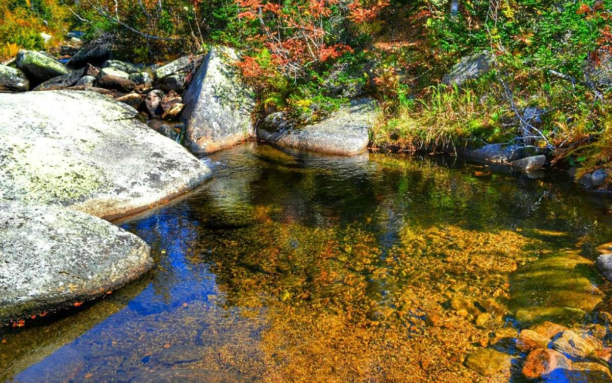 Кристально чистая вода в горном ручье