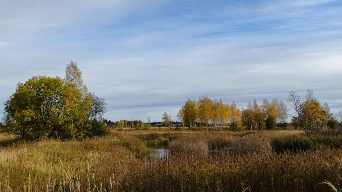 Осень на Смоленщине