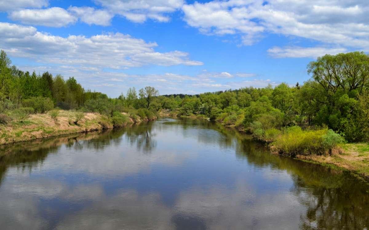 Старица реки Днепр
