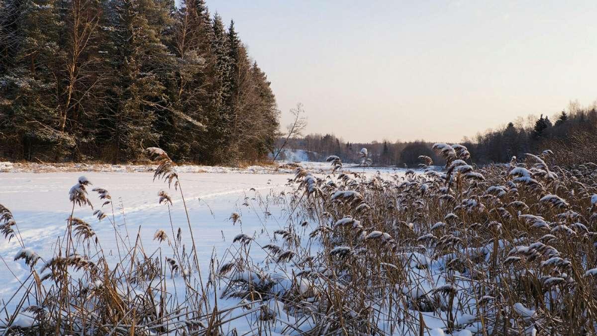 Смоленская зима.