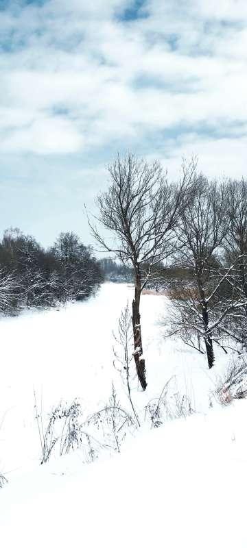 Зимняя река Шерна...