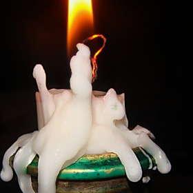 Свеча и кошки