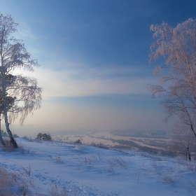 Туман в долине