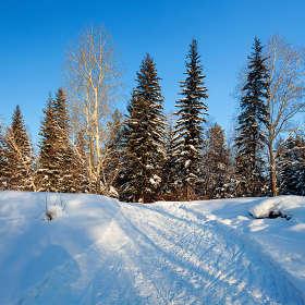 Зимний сюжет