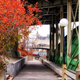 Мосты Оттавы