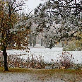 Меркнут краски в седом снегопаде