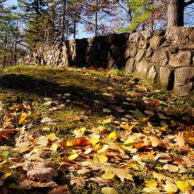 Там где листья с камнем спорят