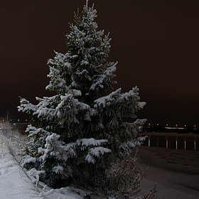 На севере диком стоит одиноко...