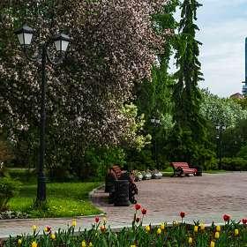 В парке городском..