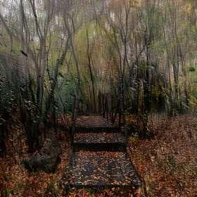 Осень в миноре..