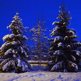Зимний вечер в гордском парке