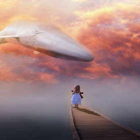 """Фото Арт """"Девочка и кит"""" (по мотивам rafy A)"""