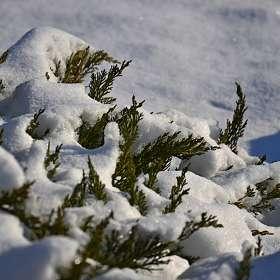 а снег идёт