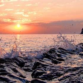 Морские капли