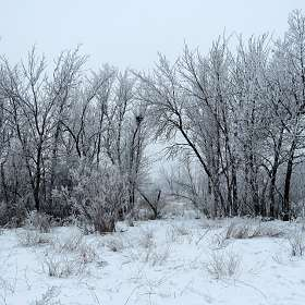 Зимние картинки 4