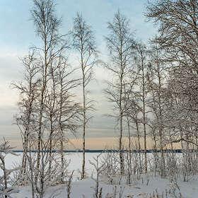 Зимние сумерки 6