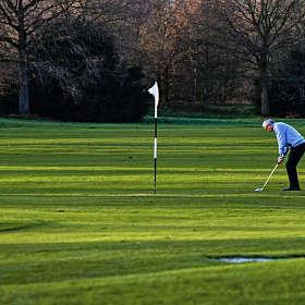 Игрок в гольф