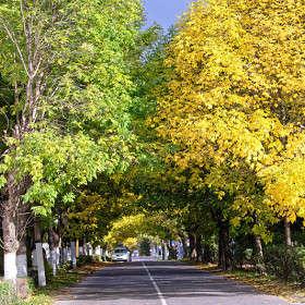 Осенний Приозерск