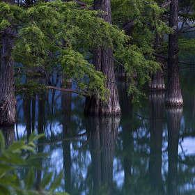Тридцать два богатыря озера Сукко.