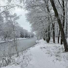 В царстве снега