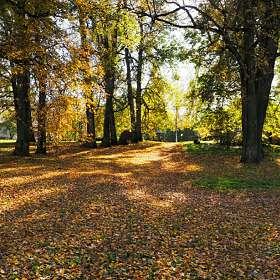 Золотая осень.