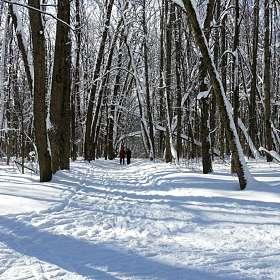 Прогулки по зимнему парку.