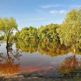 Утро на реке Омь