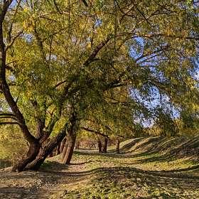 Осень на берегу реки Омь